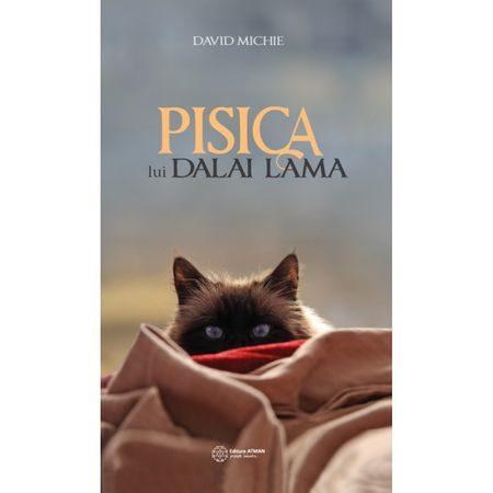 Pisica lui Dalai Lama - David Michie